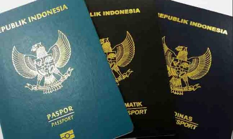 Hasil gambar untuk paspor ganda