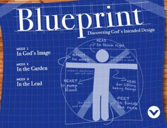 blueprint-web