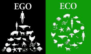egoeco - Copy