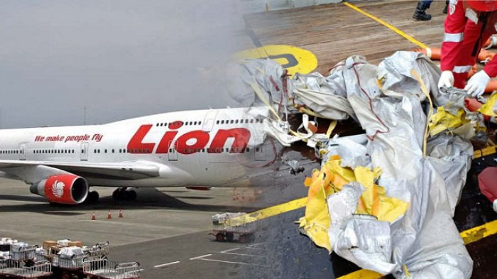 lion jatuh2